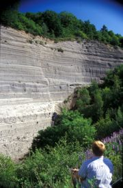Fig. 2: Laacher See Tephra deposit with excursion guide for scale (photo by G. Woerner)